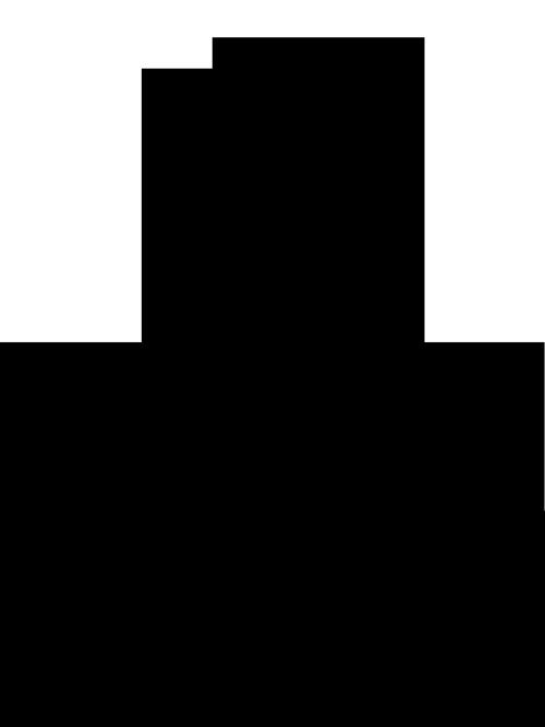 Koro Kone